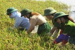 'Khát vọng Việt Nam' khi tụt hậu không còn là 'nguy cơ'