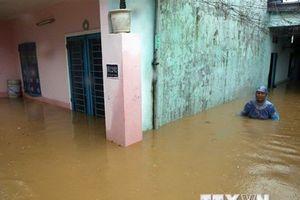 Mưa lớn ở Đà Nẵng: Cho gần 2.000 học sinh nghỉ học để đảm bảo an toàn