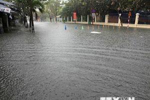 Quảng Ngãi cho toàn bộ học sinh nghỉ học ngày 10/12 do mưa lũ