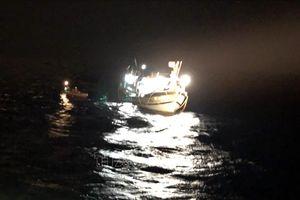 Một thủy thủ nước ngoài tử vong trên tàu khi cập cảng Hải An, Hải Phòng