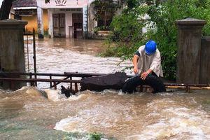 Từ Đà Nẵng đến Bình Định: Cuộc sống người dân đảo lộn vì mưa lũ