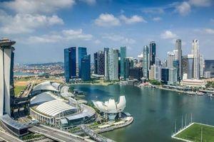 Qua Singapore làm ăn, chuyển lợi nhuận về nước đóng thuế thế nào?