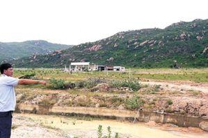 Dự án nông nghiệp công nghệ cao tại Bình Thuận: Thúc thủ vì dân 'nhảy dù' chiếm đất