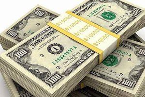 Nghệ An: Xử phạt 170 triệu đồng hành vi mua bán vàng miếng và đô la trái phép