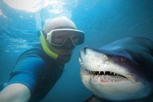 12 địa điểm selfie nguy hiểm nhất trên thế giới