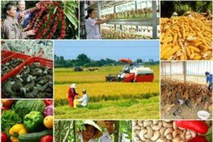 Hiệu quả cải thiện môi trường kinh doanh trong lĩnh vực NN - PTNT