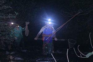 Đêm săn 'vũ nữ chân dài' ở miền gái đẹp xứ Tuyên