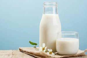 Chương trình sữa học đường chỉ được phép dùng sữa tươi