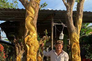 Độc đáo người đàn ông ở Cần Thơ dát vàng lên gốc cây