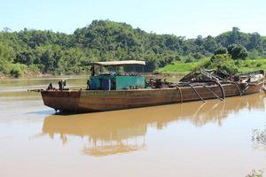 Thu hồi giấy phép do để xảy ra sạt lở ở sông Đồng Nai