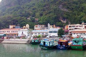 Sớm di dời Nhà máy Chế biến thủy sản của Công ty CP XNK thủy sản Quảng Ninh