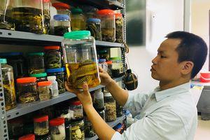 TS. Nguyễn Thiên Tạo trở thành thành viên trẻ của Viện Hàn lâm Khoa học thế giới