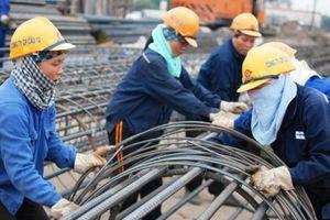 Lao động thời vụ phải đóng bảo hiểm: Người lao động vẫn chưa rõ