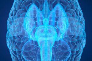 Trung Quốc tìm kiếm linh hồn với máy quét não mạnh nhất thế giới