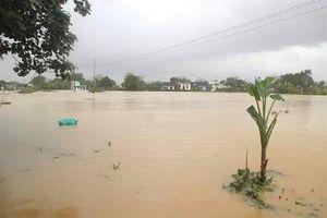 Bình Định đã có 3 người chết trong đợt lũ vừa qua