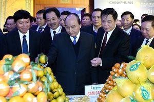Thủ tướng: Trong 9 'bông hoa' xung quanh Hà Nội thì 'bông hoa' Hòa Bình là lớn nhất