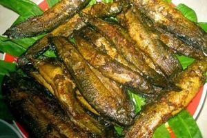 Món ngon từ cá chạch - đặc sản cải thiện sinh lý cho quý ông