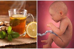 Uống 1 cốc trà gừng theo cách này, mẹ bầu khỏi tiệt cảm cúm