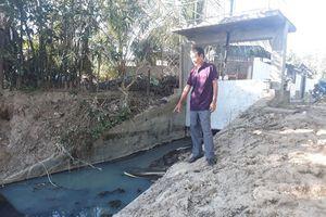 Nước từ nhà vệ sinh thải trực tiếp ra môi trường, dân hứng chịu mùi hôi thối