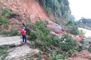 Bán đảo Sơn Trà sạt lở nghiêm trọng sau mưa lớn