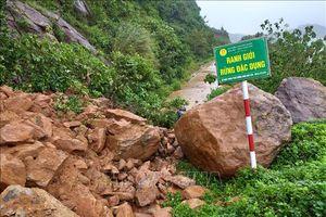 Đường lên bán đảo Sơn Trà, Đà Nẵng bị sạt lở nghiêm trọng do mưa lớn