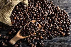 Nhiều thách thức đặt ra cho ngành cà phê Việt Nam