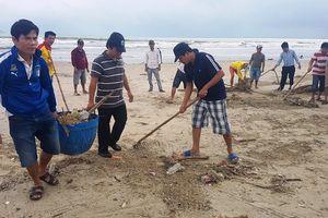 Đà Nẵng: Căng sức khắc phục hậu quả do mưa lớn