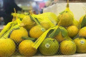 19-25/12: Hội chợ cam sành Hà Giang, quýt Bắc Kạn tại Hà Nội