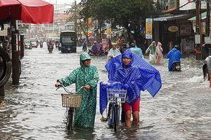 Đà Nẵng tiếp tục cho học sinh nghỉ học ngày 11/12 do mưa ngập