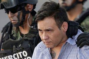 Cuộc truy lùng 'bố già' tập đoàn mafia Los Zetas