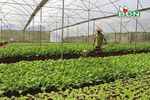 Hàng loạt hỗ trợ cho doanh nghiệp khi đầu tư tại Đắk Nông
