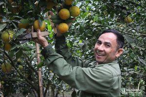 Con Cuông: Có 2 xã và 7 thôn bản đạt chuẩn nông thôn mới