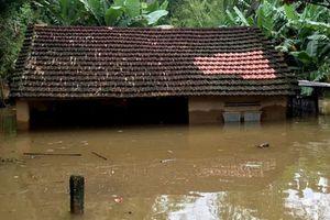 Bình Định: 3 người tử vong vì mưa lũ