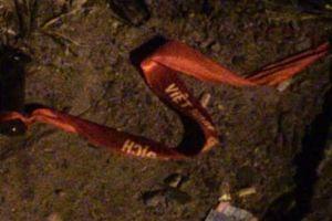 Đi 'bão' sau chung kết, 2 cô gái thương vong dưới gầm xe đầu kéo