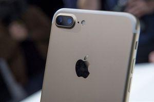 Vị trí của Apple tại Trung Quốc có thể thêm ảm đạm sau lệnh cấm
