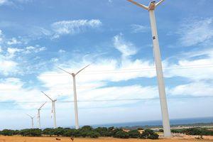 Điện gió vào 'tầm ngắm' của nhà đầu tư