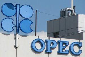 Lệnh trừng phạt của Mỹ đối với Iran khiến sản lượng dầu của OPEC sụt giảm