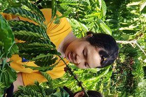 Xây dựng chuỗi giá trị cà phê Việt bền vững