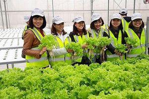 Tìm ưu thế cạnh tranh cho giải pháp Nông nghiệp thông minh 'nội'