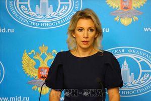 Nga chỉ trích Nghị viện châu Âu kêu gọi ngừng dự án Dòng chảy phương Bắc 2