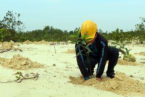 Hồ sơ xác nhận hoàn thành từng phần phục hồi môi trường trong KTKS