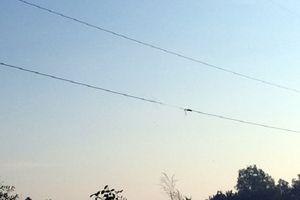 Nghệ An: Vướng dây điện bị đứt rơi xuống đường, một người bị điện giật tử vong
