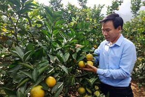 Lào Cai: Lương Sơn (Bảo Yên) nỗ lực nâng cao chất lượng các tiêu chí nông thôn mới