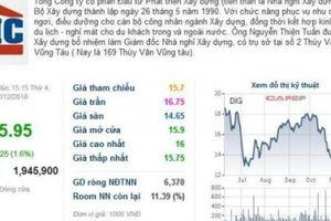 DIC Corp hoàn tất việc chuyển đổi DIC Bình Minh