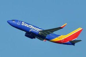 Máy bay buộc quay đầu vì... quên tim người trên khoang hành lý