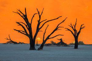 Namibia - đến thăm thung lũng chết, thành phố ma và điều không tưởng