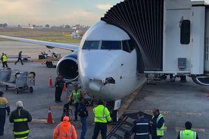 Máy bay chở khách 'tét mũi' vì đâm máy bay không người lái