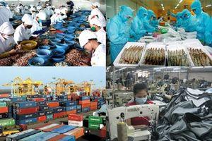 Thị trường xuất nhập khẩu Việt Nam: Cơ hội và thách thức