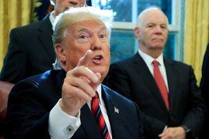 Nghị sĩ đảng Dân chủ lên án ý định trục xuất người nhập cư gốc Việt của Trump