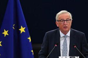 EU dự kiến công bố tài liệu Brexit vào ngày 19/12 tới